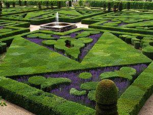 800px-French_Formal_Garden_in_Loire_Valley