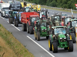 "French farmers with a signs attached to their tractors that reads ""Breeders in Distress"" (L) and ""Farmers in Distress"" roles along the RN 12 between Lamballe and Saint-Brieuc, western of France to protest against the low price purchase of their production, on July 2, 2015.  AFP PHOTO FRED TANNEAU"
