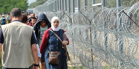 La-Hongrie-installe-une-cloture-anti-migrants-a-sa-frontiere-avec-la-Croatie