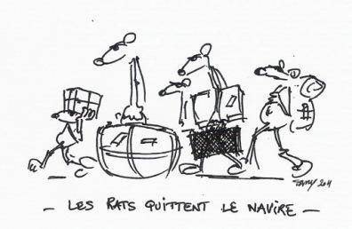 rats_navire_zps5c1a1403